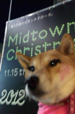 20121208midtown_potiko001.jpg