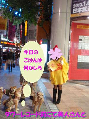 PB250257-01-300-400.jpg